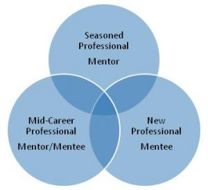mentorship program mission chart
